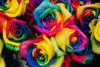 La flor de Piscis - Horóscopo Piscis